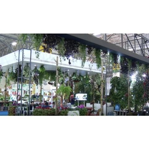 Flower Show İstanbul-plant fair