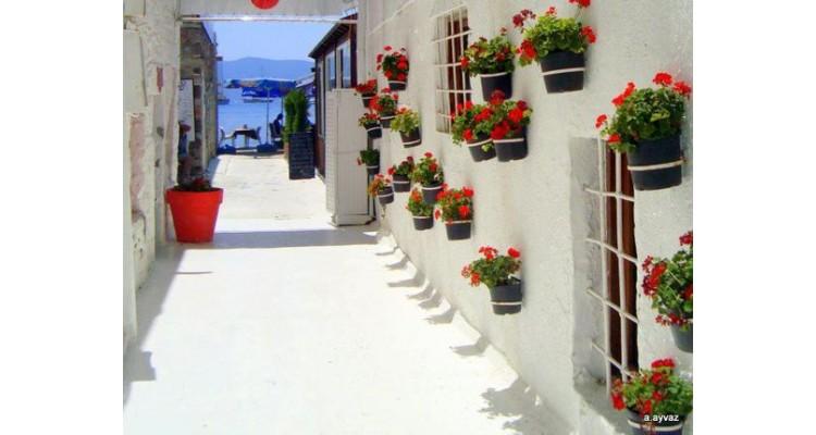 Bodrum-houses