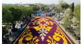 İstanbul-Tulip Festival