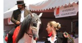 International Horse and Equestrian Fair