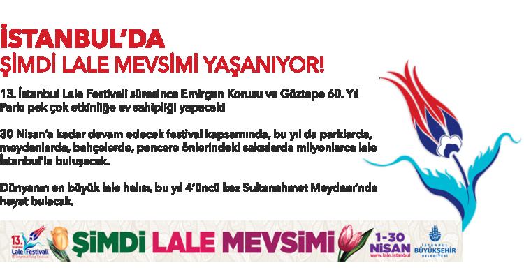 İstanbul-Tulip Festival-banner